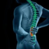 Mal au dos : Les lombaires